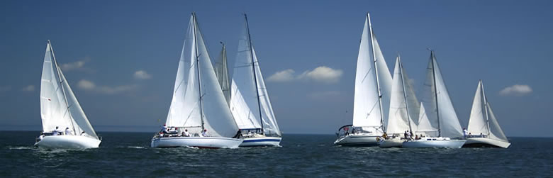 555 English School・Yachts - Auckland, New Zealand.